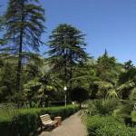 Экскурсия в парк ривьера в сочи