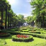 Экскурсия в парк Дендрарий