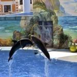 Экскурсия в дельфинарий в Сочи